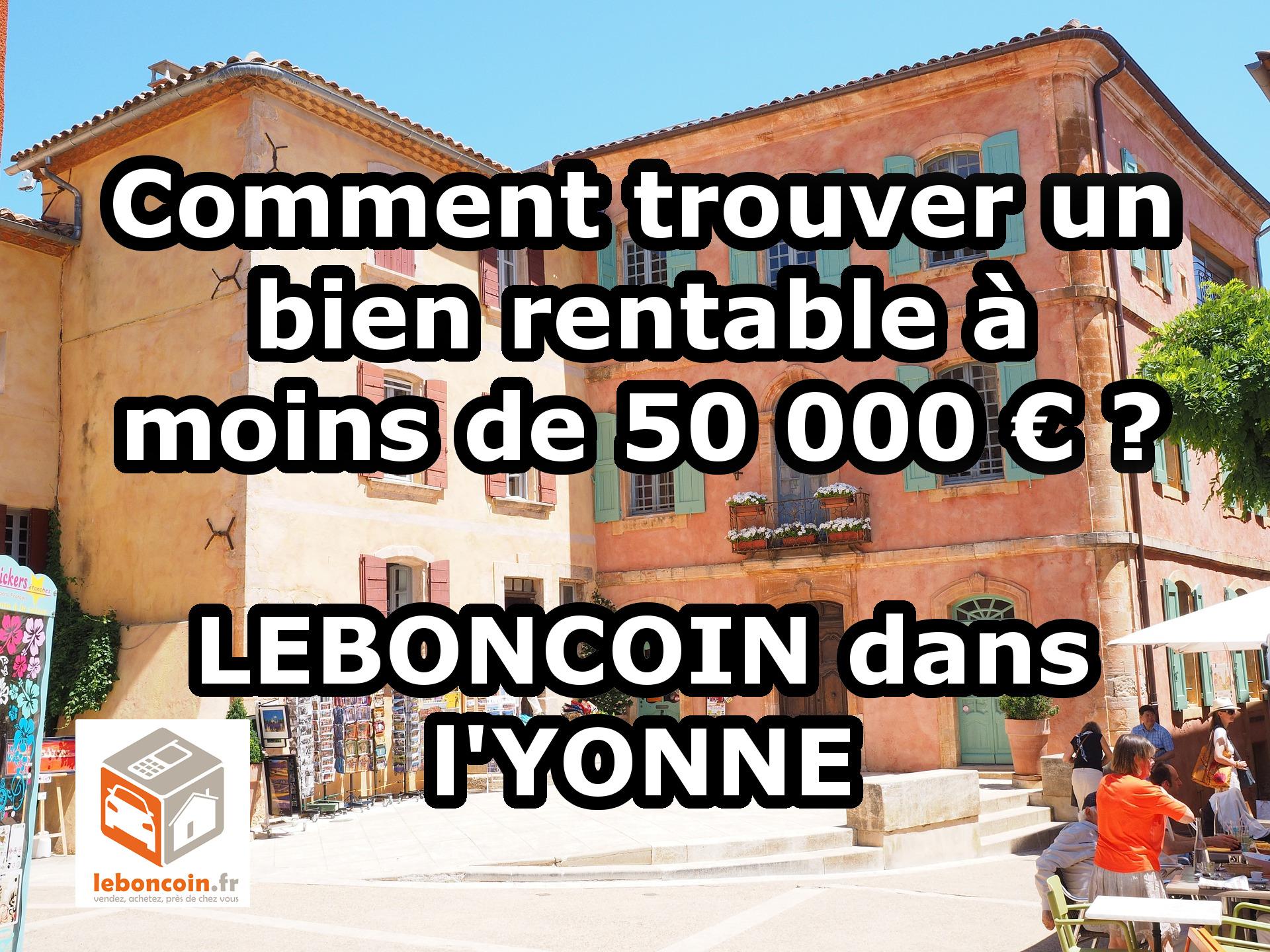 comment trouver un bien rentable moins de 50 000 euros leboncoin esprit millionnaire. Black Bedroom Furniture Sets. Home Design Ideas